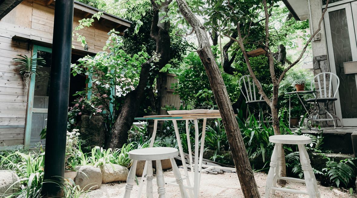 緑豊かなお庭